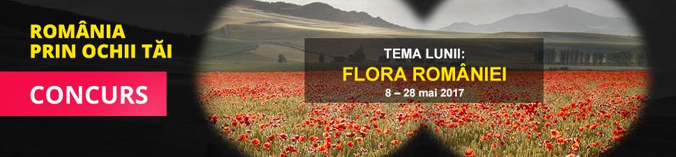Concurs Romania prin ochii tai - Flora Romaniei