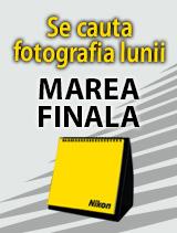 Se cauta fotografia lunii marea finala 2013