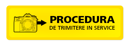 Procedura de trimitere in service